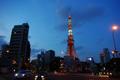 赤羽橋に光る東京タワー